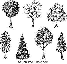 noir, ensemble, dessiné, main, encre, arbres., blanc
