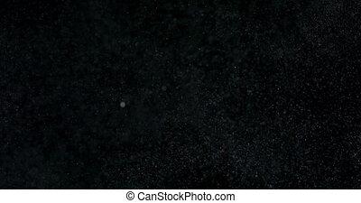 noir, isolé, fond, poudre