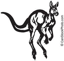 noir, kangourou, blanc