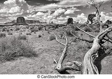 noir, monument, blanc, vallée, paysage, vue