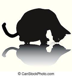 noir, ombre, silhouette, chat