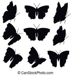 noir, papillon, ensemble, isolé, blanc