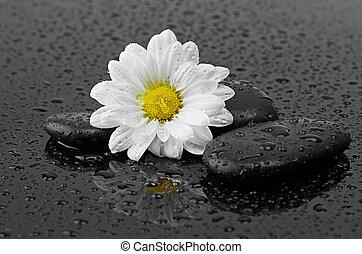 Pierres cailloux eau noir blanc gouttes pierres cailloux r sum eau drops fond noir - Pierre eau pokemon noir ...