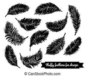 noir, plumes