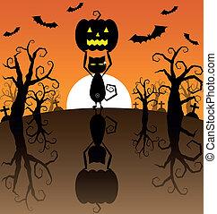 noir, potirons, halloween, fond, chat