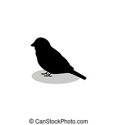 noir, silhouette, oiseau, animal, moineau