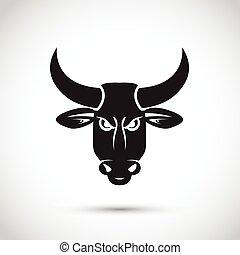 noir, taureau