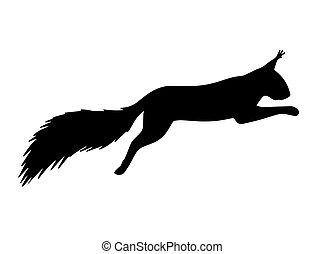 noir, vecteur, silhouette, écureuil, sauter