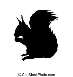 noir, vecteur, silhouette, écureuil