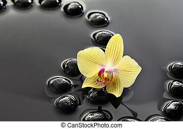 Pierres gris orchid e zen ciel pierres nuages gris zen ciel orchid e - Pierre eau pokemon noir ...