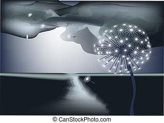 noite, céu, contra, dandelion