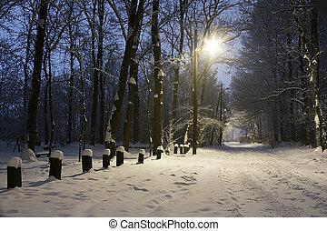 noite, inverno