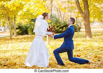 noiva, engraçado, noivo, casório