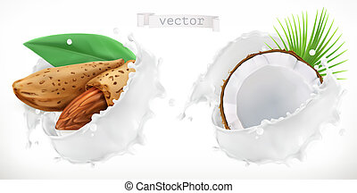 noix coco, amande, réaliste, vecteur, splash., lait, 3d