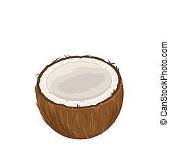 noix coco, blanc, isolé, fond, fruits