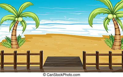 noix coco, bord mer, arbres, vue
