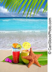 noix coco, etoile mer, cocktail, plage tropicale, rouges