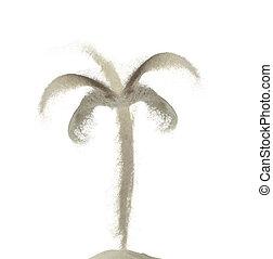 noix coco, fait, arbre, isolé, sable, éclaboussure, fond, blanc