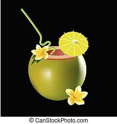 noix coco, flower., cocktail, arrière-plan., frangipanier, isolé, illustration, réaliste, vecteur, noir