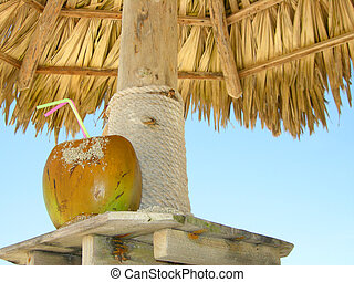 noix coco, plage, cocktail