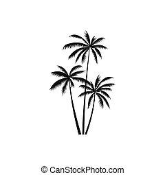 noix coco, simple, style, arbres, trois, paume, icône