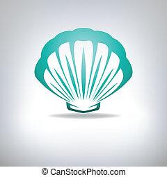 noix saint jacques, seashell., vector.