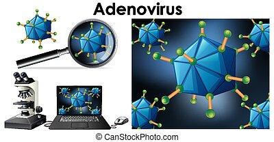 nombrado, objeto, arriba, aislado, virus, cierre, adenovirus