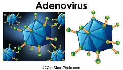 nombre, objeto, aislado, arriba, virus, cierre, adenovirus