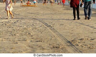 non identifié, plage, délassant, gens