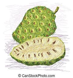 noni, frugt, kors sektion