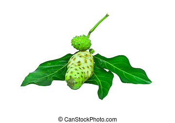 Noni isolated on white with clipping path