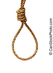 Noose - A ready made noose on a white background.
