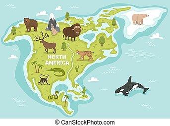 nord, carte, vie sauvage, animaux, américain