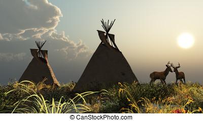 nord, indischer amerikaner