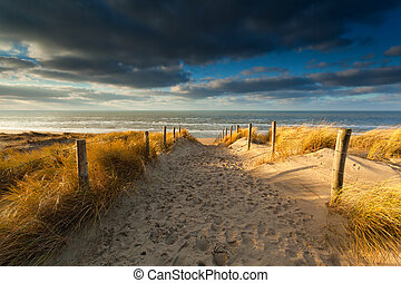 nord, luce sole, mare sabbia, percorso, spiaggia
