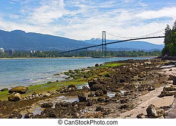 nord, parc, vancouver, rivage, bas, stanley, pendant, canada., paysage, marée