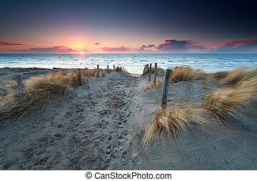 nord, sabbia, tramonto, mare, percorso, spiaggia