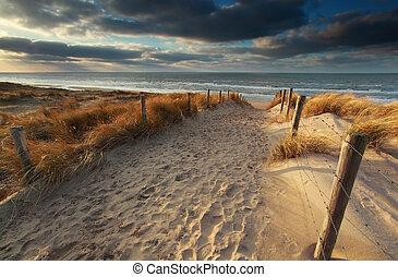 nord, sole, mare sabbia, percorso, spiaggia