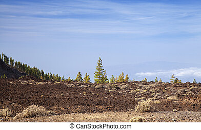 nord, vue, tenerife, ouest