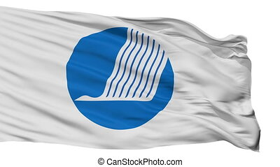Nordic Council Flag Isolated Seamless Loop - Nordic Council...