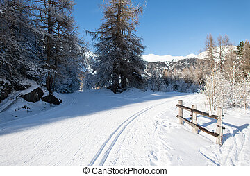 Nordic ski trail with classic and free technique