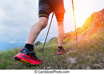 Nordic walking in the mountain