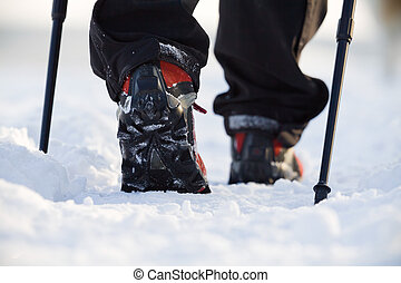 Nordic walking in winter - Woman exercising nordic walking ...