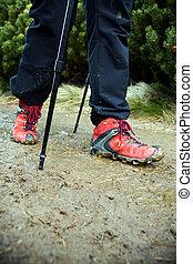 Nordic Walking legs