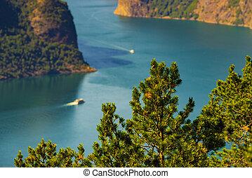 norge, skib, fjord, cruise