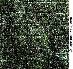 Nori - An image of green leaf of dried nori