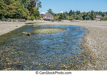Normandy Park Stream