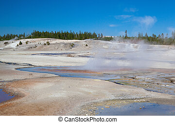 Norris Geyser Basin in Yellowstone National Park, Wyoming, USA.