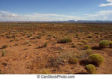 norteño, arizona, desierto