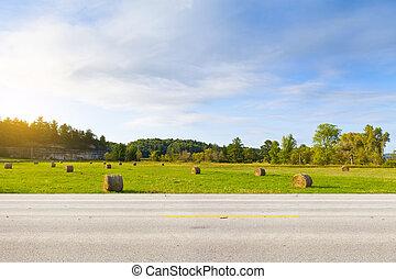 norteamericano, camino de país, vista lateral